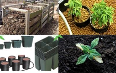 Indoor Marijuana Medium