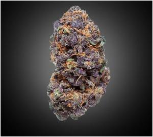 marijuana_strains_with_low_odor