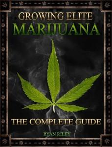 best-marijuana-grow-book