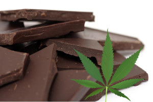 chocolate-marijuana-chemicals-07-28