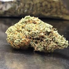 cheese-marijuana