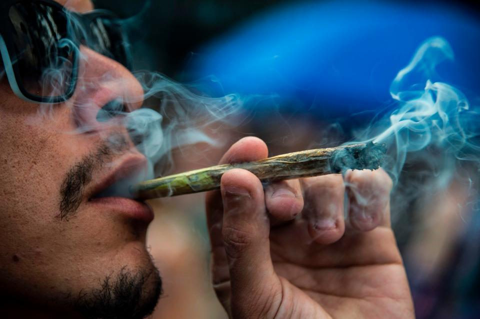 Can you Smoke Male Weed Plants